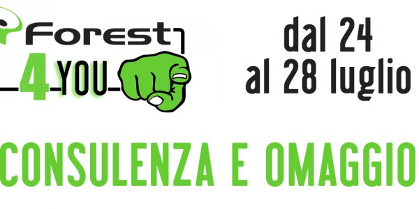 Forest4you-4incontro
